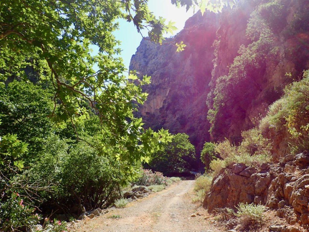 Deliana Gorge sunshine road