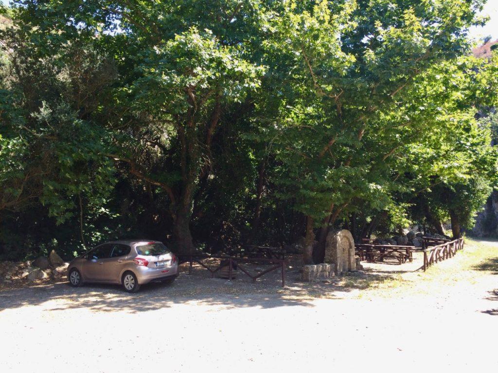 Deliana parking car