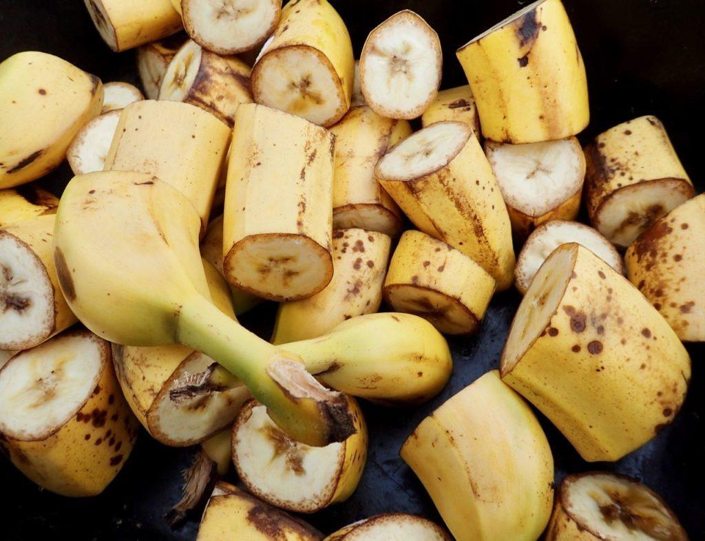 Elgtun elk bananas review