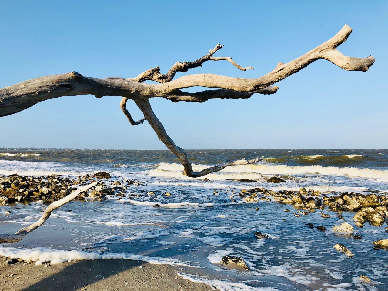 Jekyll island Driftwood beach biking trail