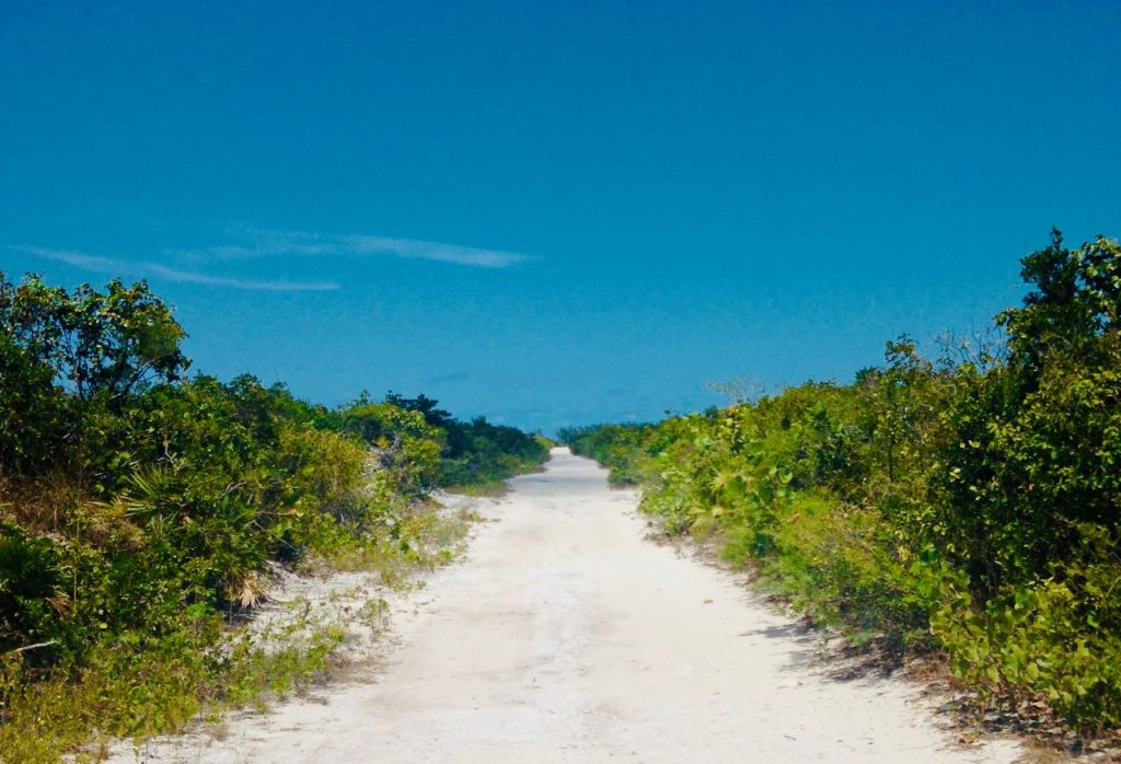 All you need to know day trip north middle caicos bambarra beach