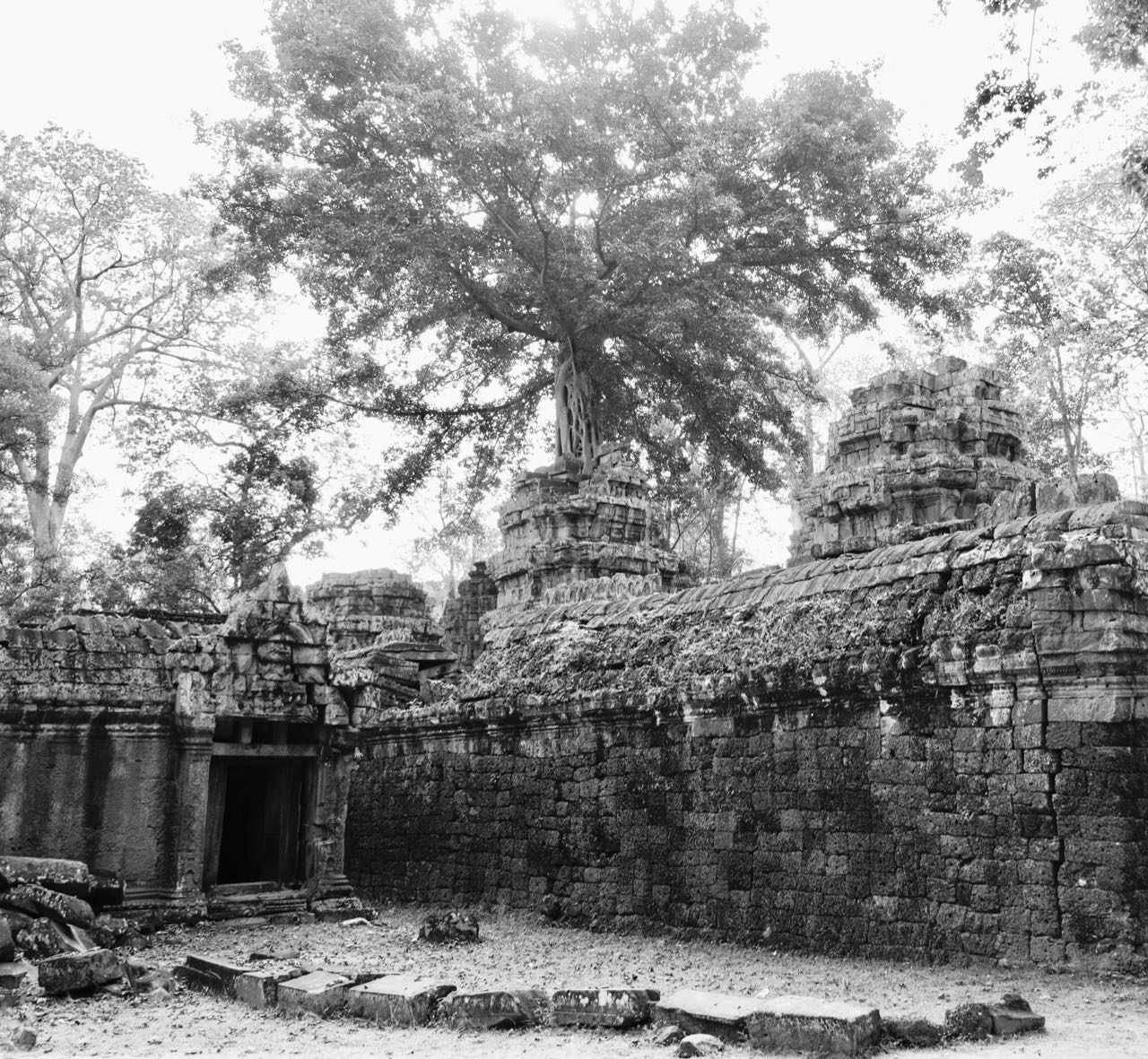 Ta Promh Temple walls Angkor Kambodsja Siem Reap review