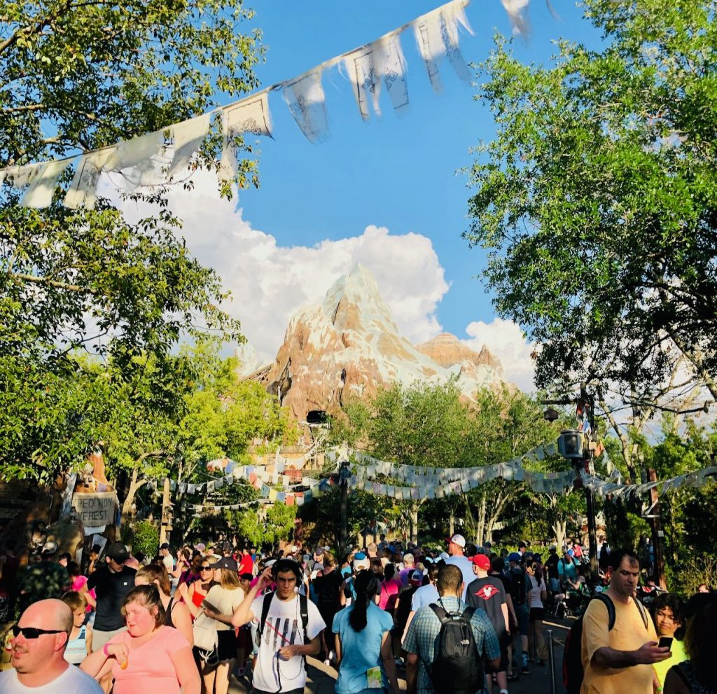 Travel Highlights 2018 Orlando Animal Kingdom