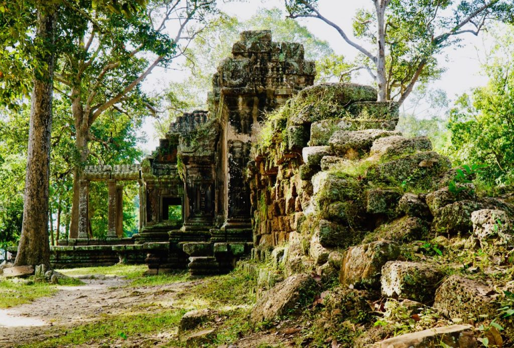 With Norwegian Eyes Travel Highlights 2018 Ta Prohm Temple Angkor Wat