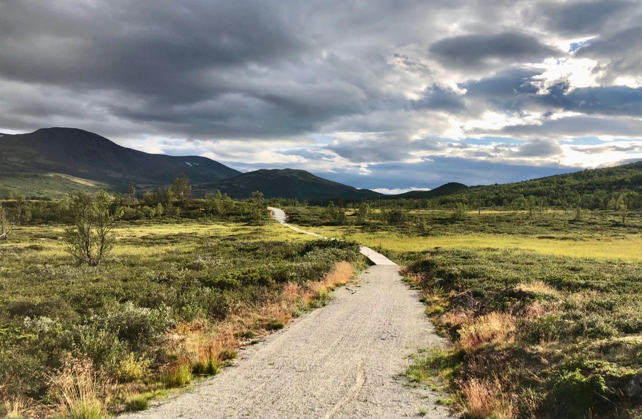 5-day Road Trip From Oslo Hjerkinn