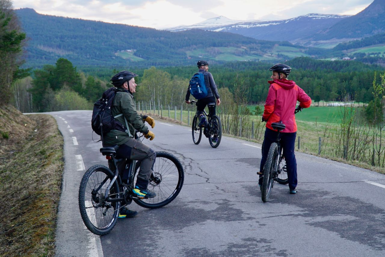 Great company and brand new bikes. Elk safari on ebikes in Dovre