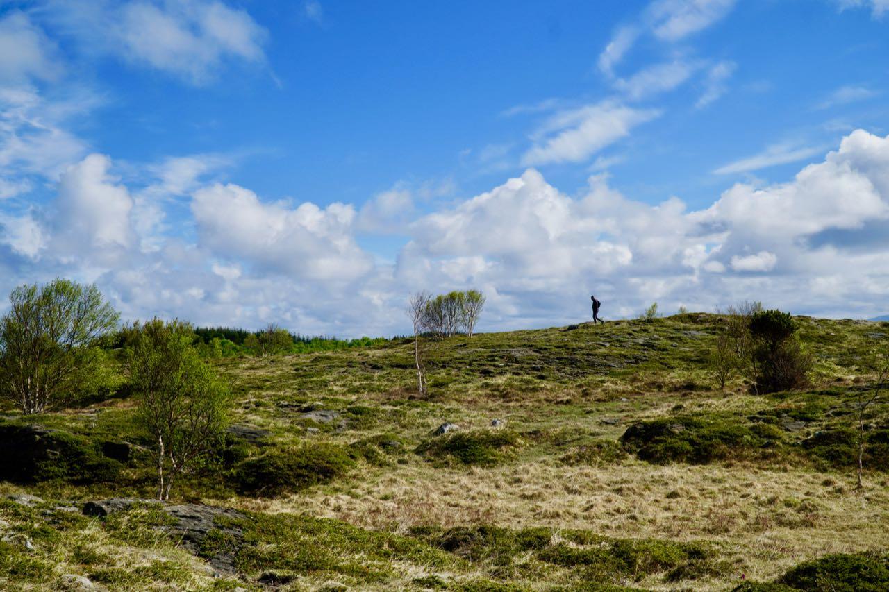 Holandsosen nature reserve Vega