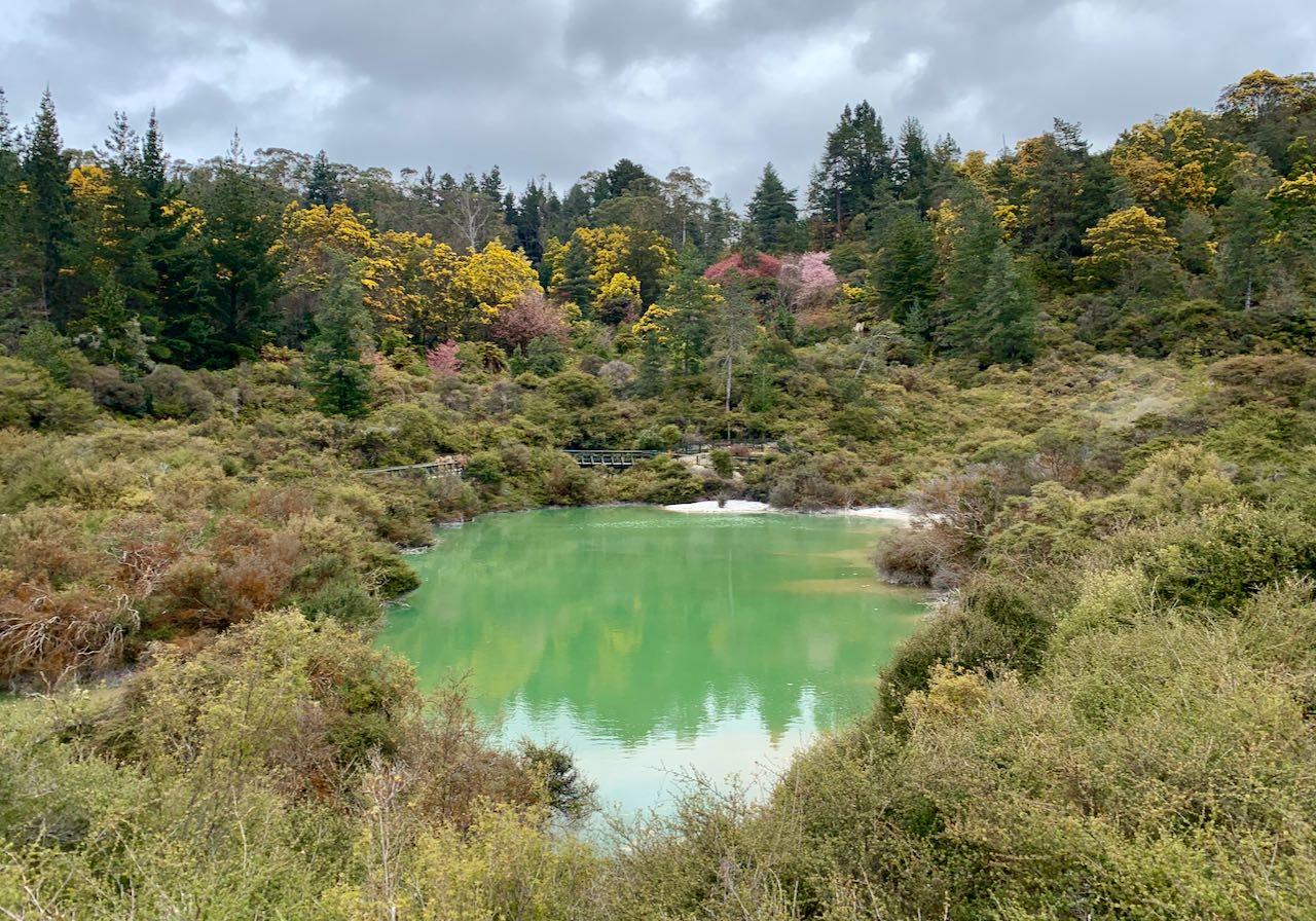 Green pool Geothermal area Whakarewarewa, A Geothermal Māori Village