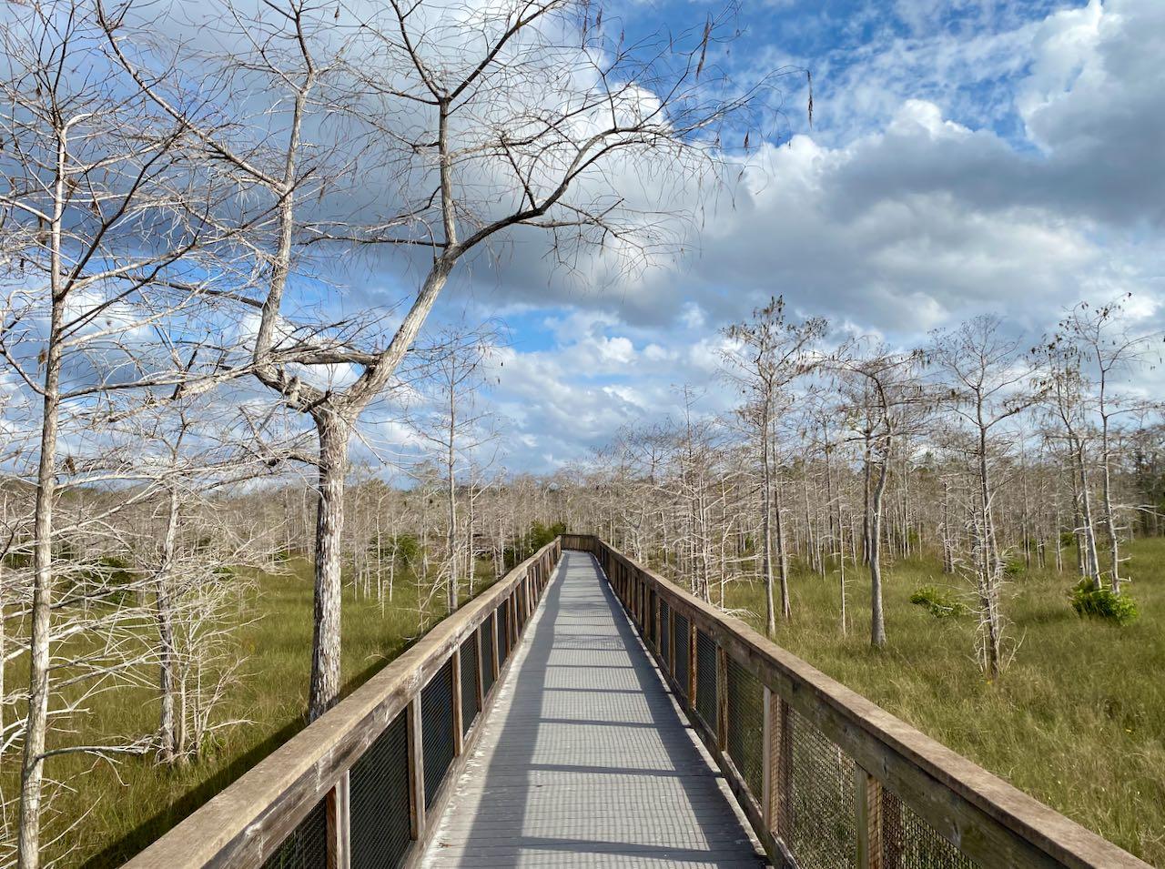Kirby Storter Roadside Park and Boardwalk 17 steder å stoppe langs Tamiami Trail/ U.S Highway 41