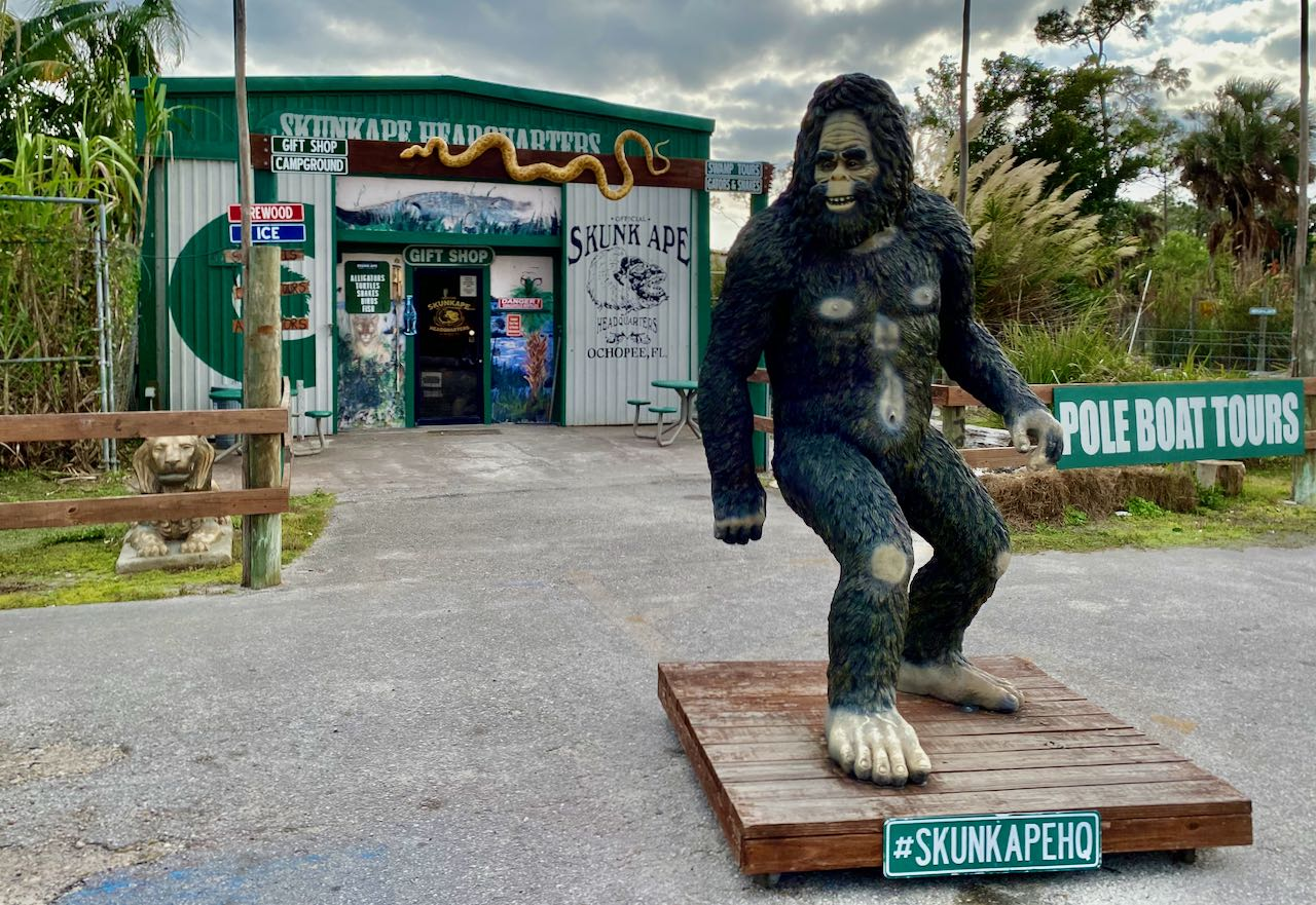 Skunk Ape Research Headquarters Attractions and Places to Stop Along the Tamiami Trail/U.S. Highway 41