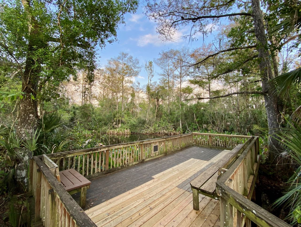 Big Cypress Bend Boardwalk Attractions and Places to Stop Along the Tamiami Trail/U.S. Highway 41