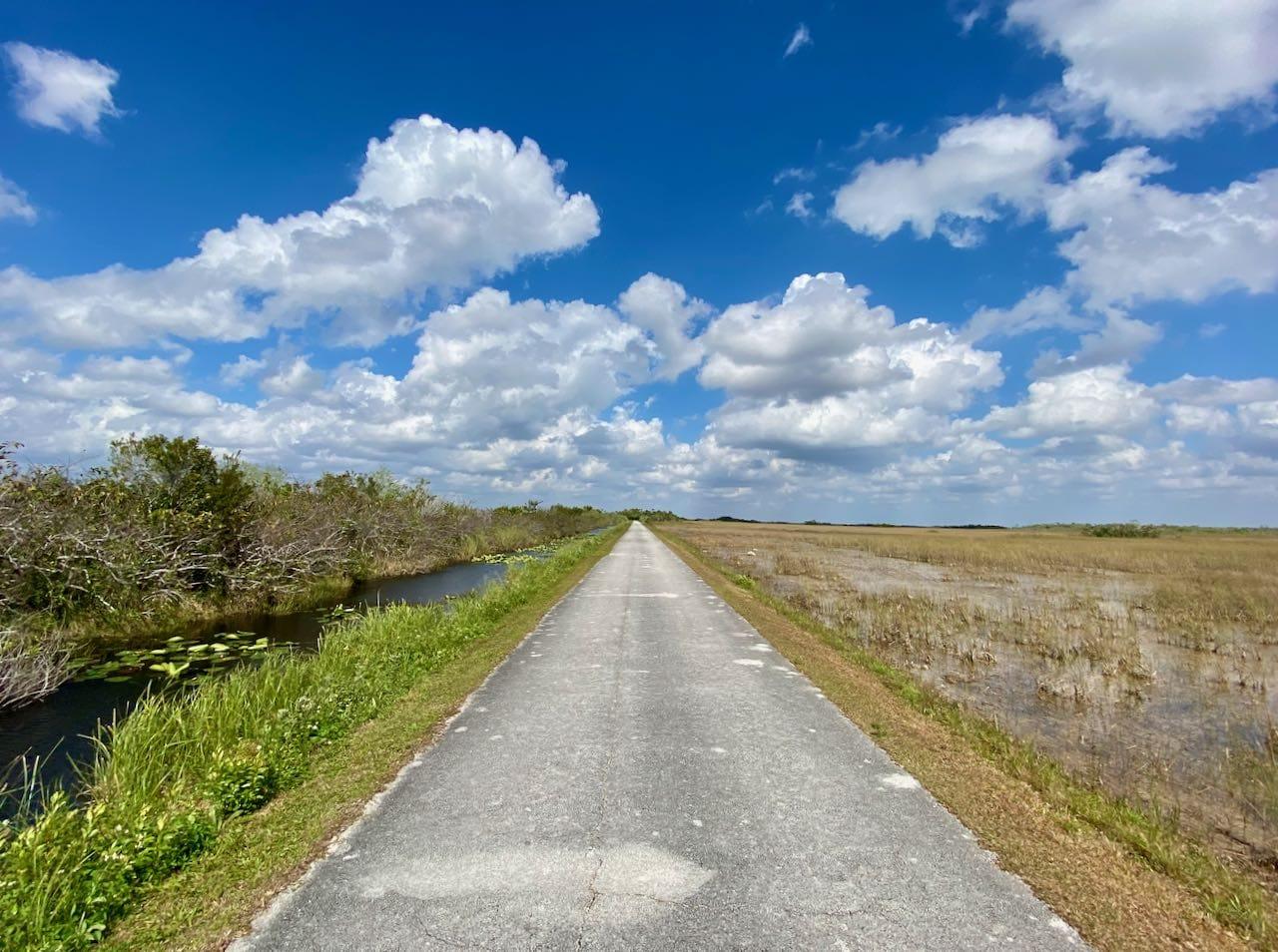 Shark Valley Everglades National Park 17 steder å stoppe langs Tamiami Trail/ U.S Highway 41