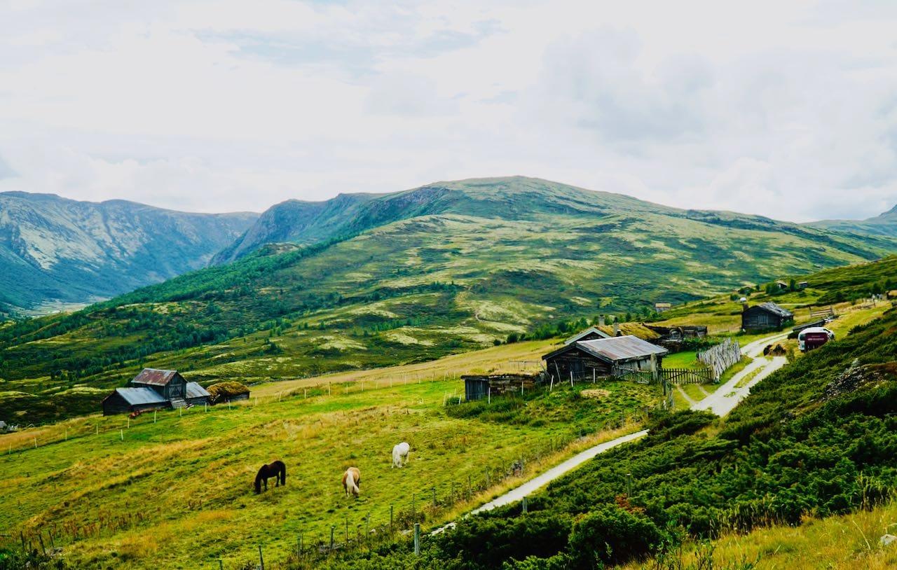 Grimsdalen Tour de Dovre 33 travel tips Norway