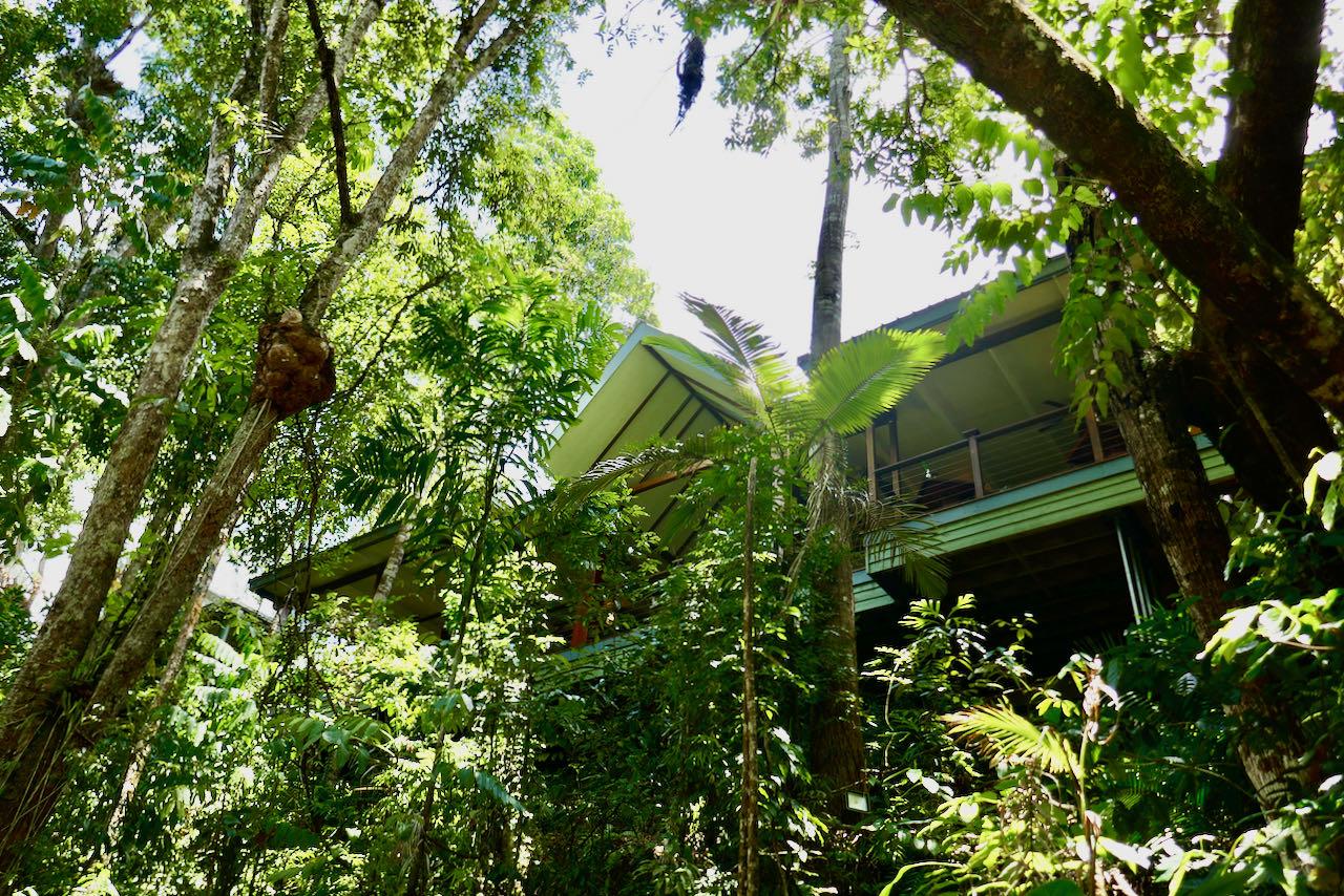 Cairns Road Trip Silky Oaks
