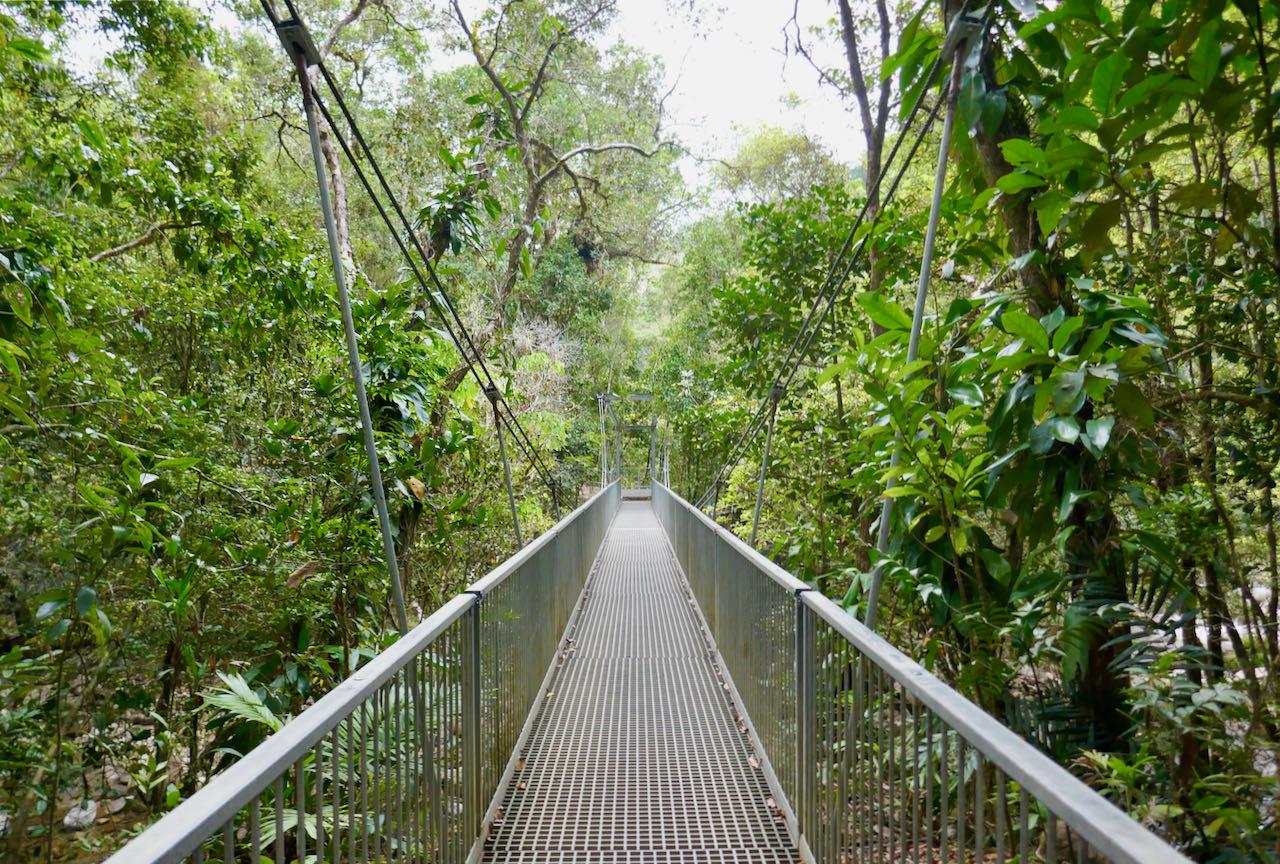 Cairns Road Trip Mossman Gorge
