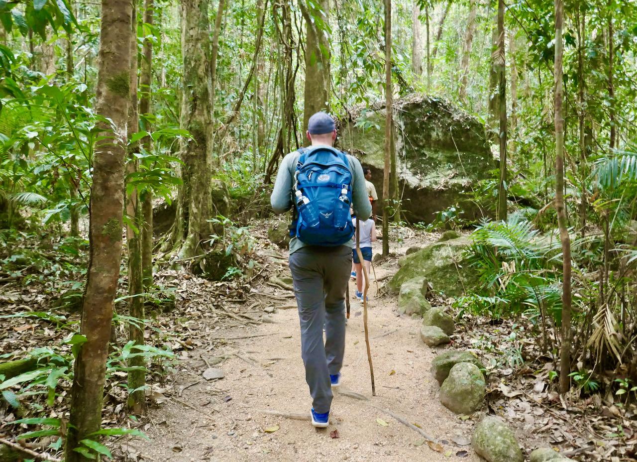 Cairns Road Trip Ngadiku Dreamtime Walk Mossman Gorge